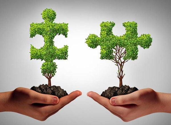 Mediation im Umweltrecht und öffentlichen Recht